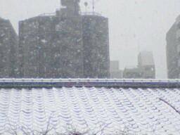 目覚めると雪だった